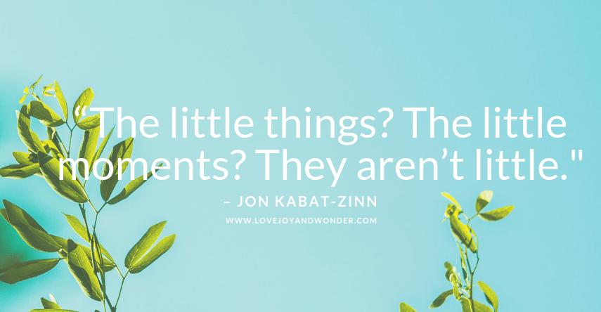 Jon-Kabat_Zin-Mindful-Quotes